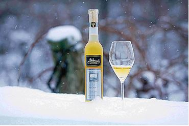 Picture for category Icewine & Dessert Wine